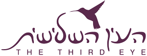 Third_Eye_Logo_Purple_Site